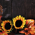 Maple Tree And Sunflowers by Moncherie