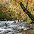 Mardis Mills Falls 1 by Jack Peterson