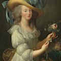 Marie-antoinette, After 1783  by Elisabeth Louise Vigee-Lebrun