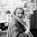 Marlene Dietrich In Paris by Giancarlo Botti