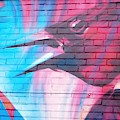 Maroon Blackbird by Ee Photography