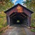 Martin's Mill Covered Bridge by Rick Berk