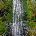 Marymere Falls Olympic National Park by Bruce Gourley