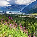 Matanuska Valley, Southcentral Alaska by Lyl Dil Creations