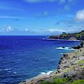 Maui Coast by Jeff Phillippi