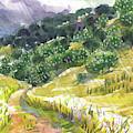 May Rain by Judith Kunzle