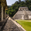 Mayan Ruins In Palenque, Chiapas by Photoshooter2015