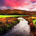 Meandering Through Scotland Evening Light II by Debra and Dave Vanderlaan