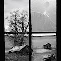 Memories Past by Leland D Howard