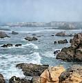 Mendocino County California Coastline by Joan Carroll