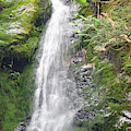 Merriman Falls Olympic National Park A by Bruce Gourley