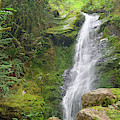 Merriman Falls Olympic National Park B by Bruce Gourley
