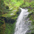 Merriman Falls Olympic National Park C by Bruce Gourley
