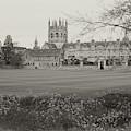 Merton Fields by Nicholas Blackwell