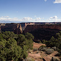 Mesa Canyon Greens by Dylan Punke