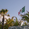 Mexican Flag by Jean Noren