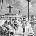 Miami Beachs Most Versaille Hotel Holdi by William C. Shrout