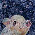 Micro Pig by Michael Creese