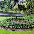 Middleton Gardens Mill Pond by Bill Barber