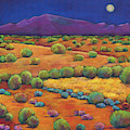 Midnight Sagebrush by Johnathan Harris