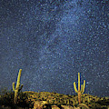 Milky Way And Cactus by Chance Kafka