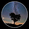 Milky Way Heart Tree Circle by Chris Whiton