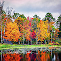 Minnesota Autumn by Framing Places