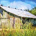 Mississippi Delta Barn by Barry Jones