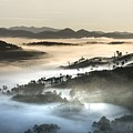 Mist by Top Wallpapers