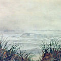 Misty Morning On Lawrencetown Beach by Anthony Palmer