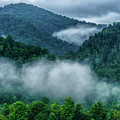 Misty Mountains In Summer by Thomas R Fletcher
