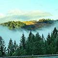 Misty Mountains - View From Highway Of Distant Mountaintop In The Sunlight Above The Fog by Susan Vineyard