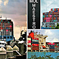 Mol Maestro Collage by Diann Fisher