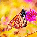 Monarch Butterfly  by Susan Rydberg