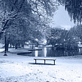 Monochrome Blue Nights Boston Snowfall In The Boston Public Garden Boston Ma Pond by Toby McGuire