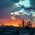 Monsoon Passing by Cathy Franklin