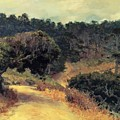 Monterey Forest 1919 by Guy Rose