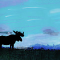 Moose - At - Sunset by D Hackett