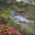 More Seven Bridges Road by Susan Rissi Tregoning