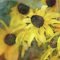 More Yellow 7401 Idp_2 by Steven Ward