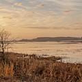 Morning At Boombay Hook by Kristia Adams