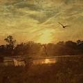 Morning Flight by Jack Wilson
