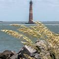 Morris Island Lighthouse - Charleston South Carolina by Dale Powell