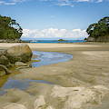 Mosquito Bay Abel Tasman National Park New Zealand by Joan Carroll