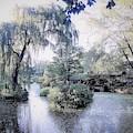 Mossy Lake by Katherine Taibl