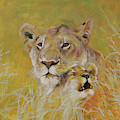 Mother And Baby I Lions by Odile Kidd
