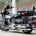 Motorcycle Cruiser by Jose Rojas