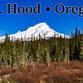 Mount Hood Oregon In Winter 01 by G Matthew Laughton