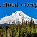 Mount Hood Oregon In Winter 02 by G Matthew Laughton