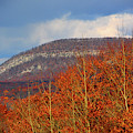 Mount Tammany From Route I-80's Scenic Overlook by Raymond Salani III
